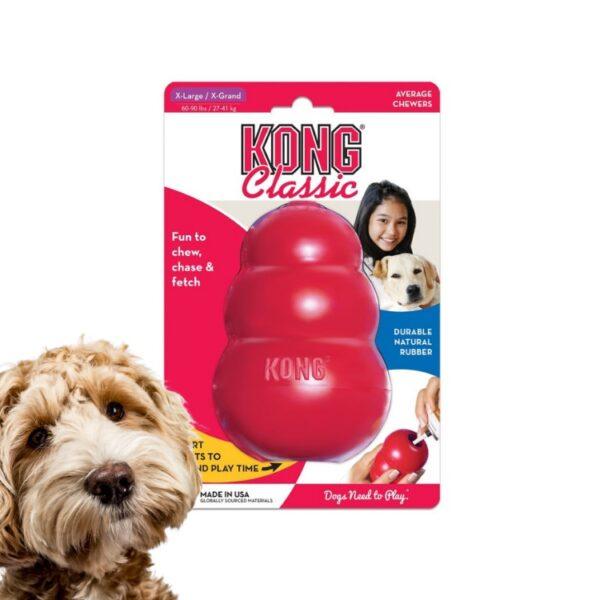 צעצוע קונג לכלב