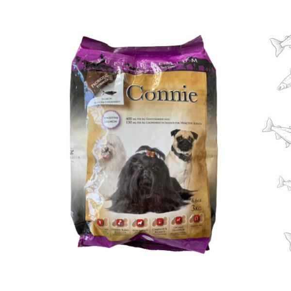 מזון סלמון לכלבים